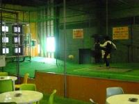 パーフェクトサッカー3